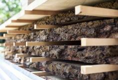 3Oak-wood-stack