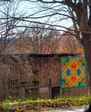 AveryCoQuiltTrail-Summer-Leaves