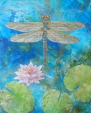 Beth-Andrews-Dragonfly