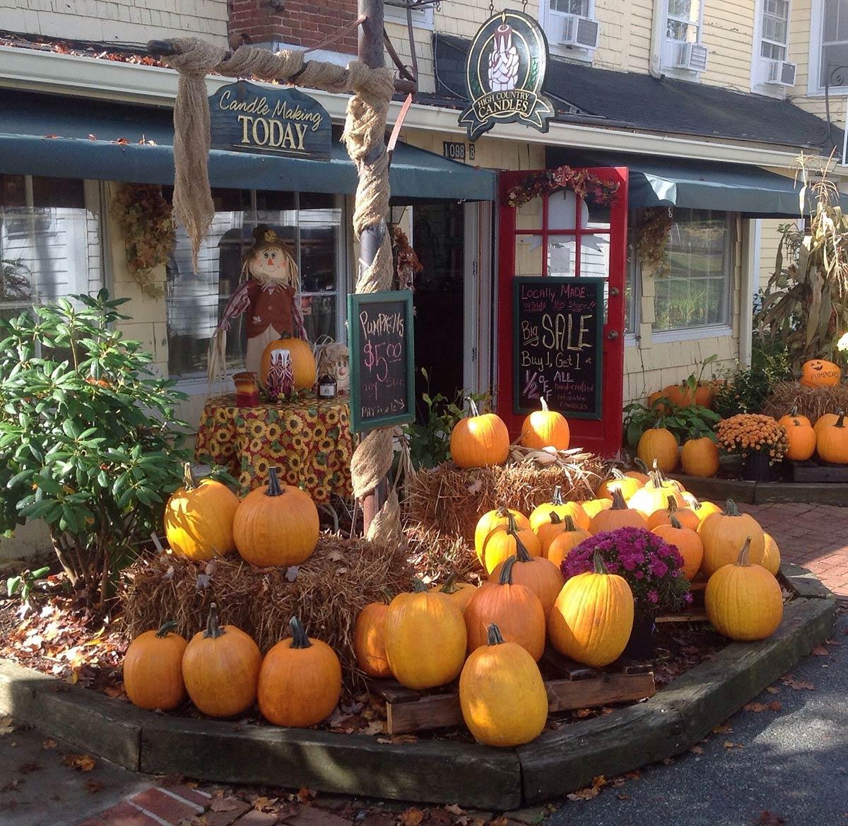 High-CC-pumpkins