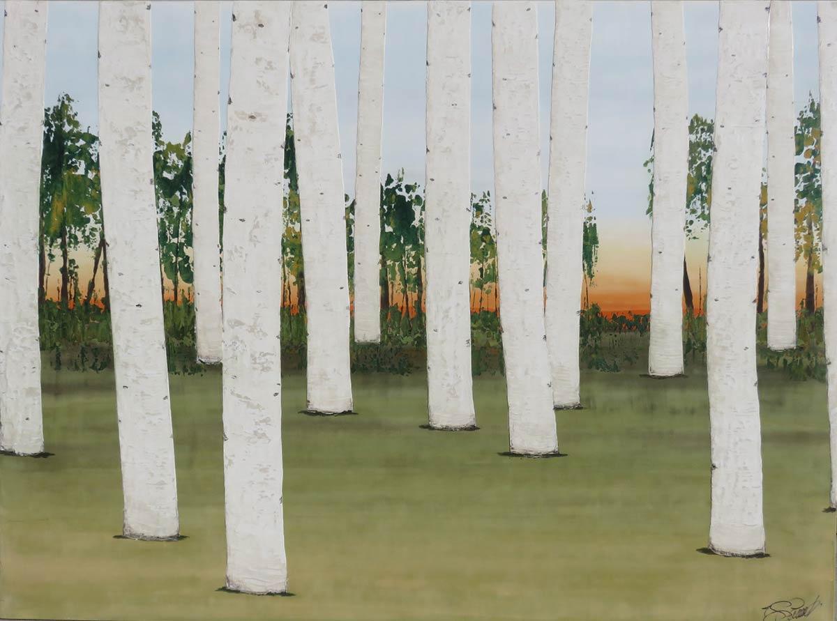 James-Garrett-Birch-Forest-