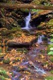 Great Smokies waterfall