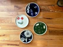 SusanCoe-small-plates