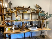 ThomasLangan-assorted-animals