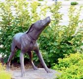 plott-hound