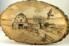 WoodburninsMyron-Barn-with-Hawk