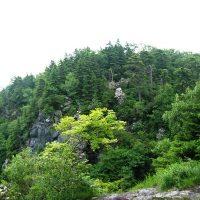 Bluff Mountain Nature Preserve Thumbnail
