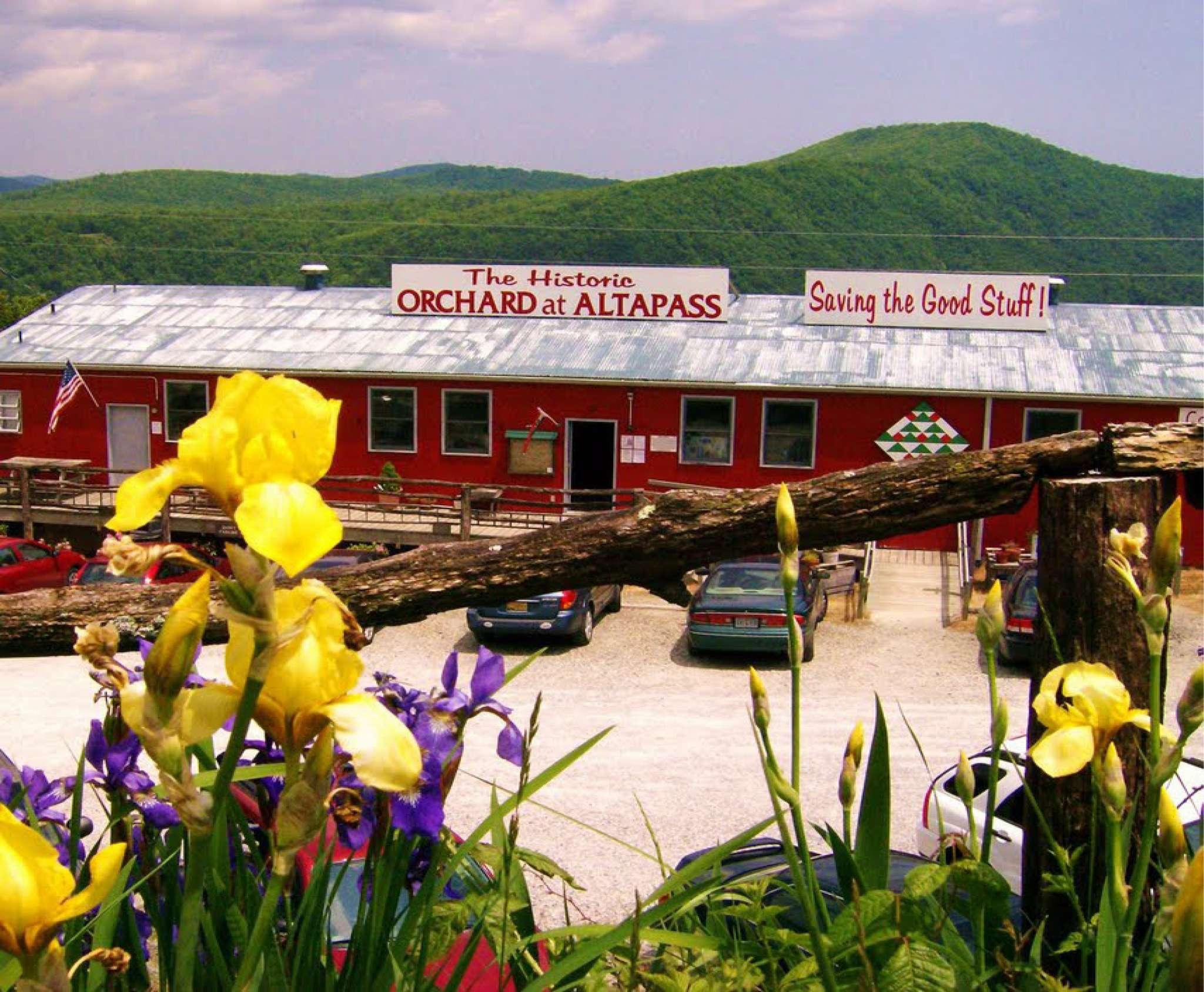 The Orchard at Altapass Thumbnail