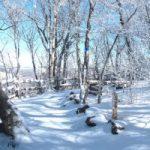 Elk Knob State Park in snow