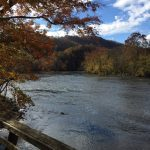 French Broad river near Marshall
