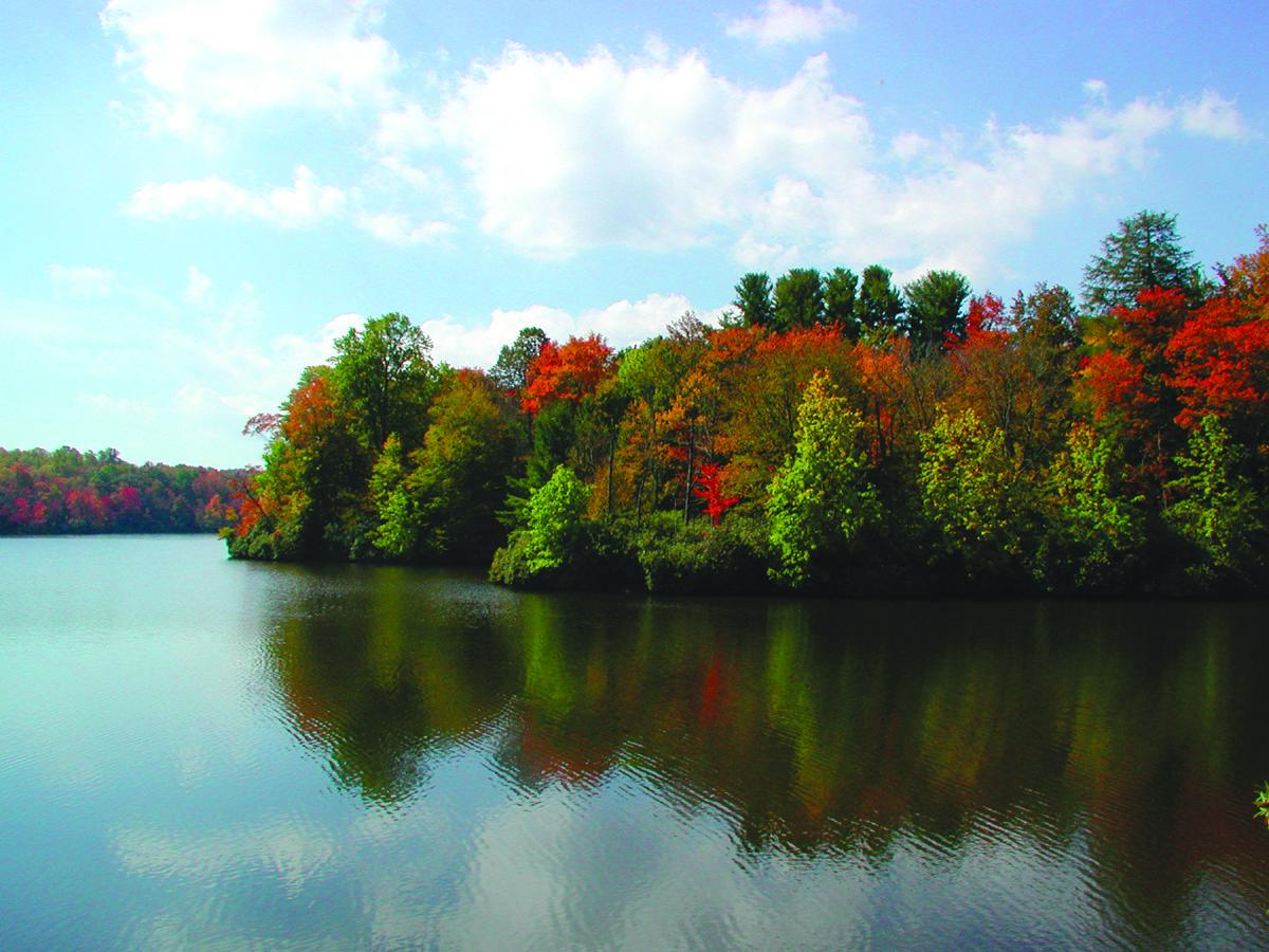 Price Lake fall folliage