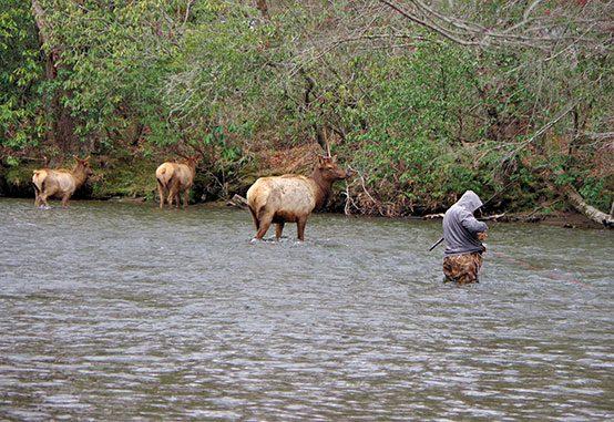 Fishing in North Carolina's Mountains - Blue Ridge National Heritage