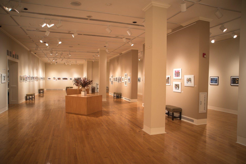 Wilkes Art Gallery Thumbnail