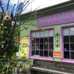 Silva Gallery, Brasstown