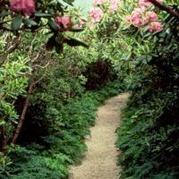 Craggy Gardens Hiking Trails - Blue Ridge Parkway (U.S. National ...